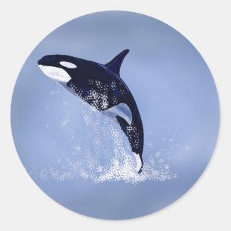 Orca Pegatina Redonda