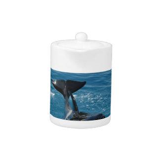 Orca pertenecemos en el diseño salvaje
