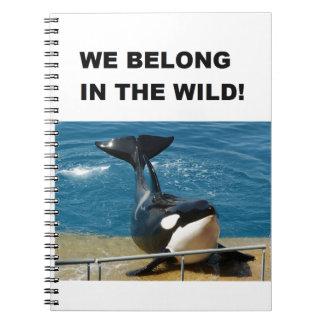 Orca pertenecemos en el diseño salvaje libreta espiral