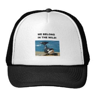 Orca pertenecemos en el diseño salvaje gorro de camionero