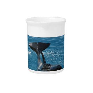 Orca pertenecemos en el diseño salvaje jarra de beber