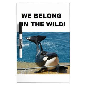 Orca pertenecemos en el diseño salvaje pizarra blanca