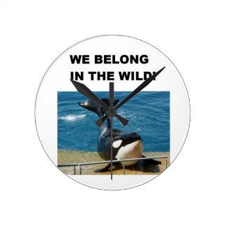 Orca pertenecemos en el diseño salvaje reloj redondo mediano