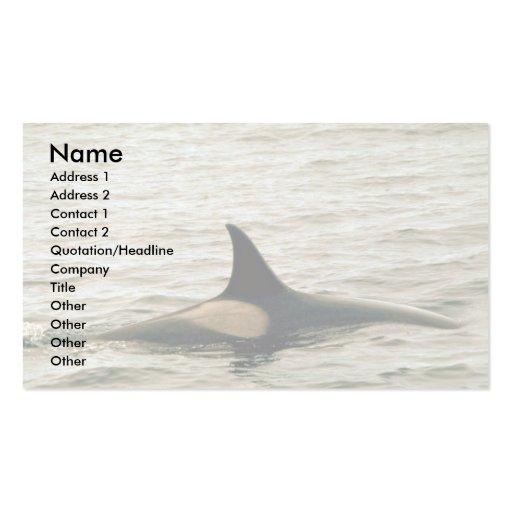 Orca Plantilla De Tarjeta De Visita