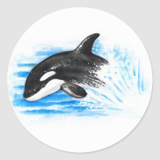 Orca Playing Classic Round Sticker