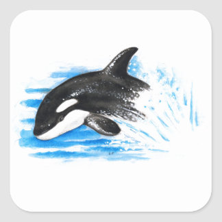 Orca Playing Square Sticker