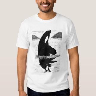 Orca, pluma y tinta de la Espía-Lupulización Playera