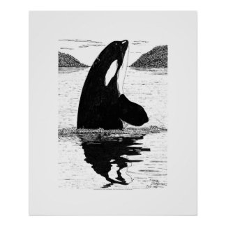 Orca, pluma y tinta de la Espía-Lupulización Póster