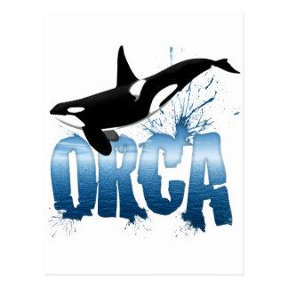 Orca Post Card