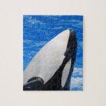 Orca Puzzle Con Fotos