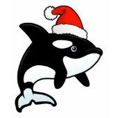 Orca Santa