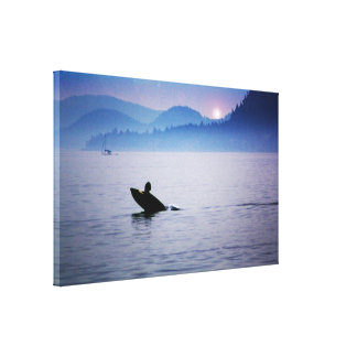 Orca Sea Canvas Print