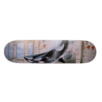 Orca Skateboard Deck