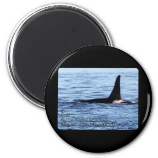 Orca;Southern Resident Killer Whale-L28 Orca 2 Inch Round Magnet
