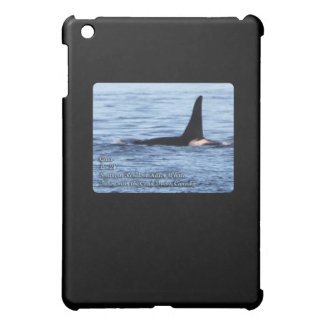 Orca;Southern Resident Killer Whale-L28 Orca Cover For The iPad Mini