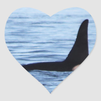 Orca;Southern Resident Killer Whale-L28 Orca Heart Sticker