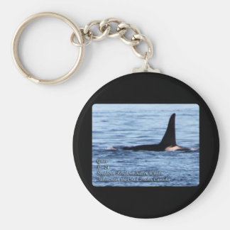 Orca;Southern Resident Killer Whale-L28 Orca Keychains