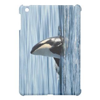 Orca Spyhop  iPad Mini Covers