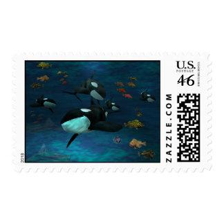 Orca - subacuática Sealife ballenas pescados s