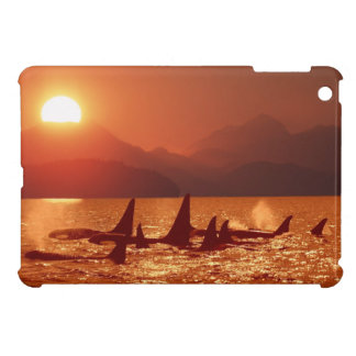 Orca Sunset: iPad Mini Case