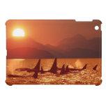 Orca Sunset: iPad Mini Covers