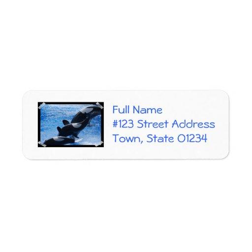 Orca Trio Mailing Labels