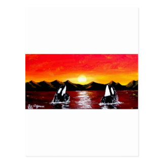 ORCA TWIN WHALES AT SUNSET POSTCARD
