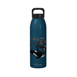 Orca Water Bottle Custom Killer Whale Art Bottles