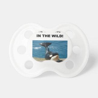 Orca we belong in the wild design pacifier