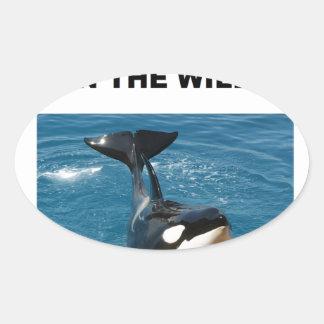 Orca we belong in the wild design oval sticker