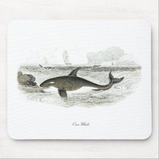 Orca Whale #13 Killer Whale Mouse Pad