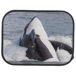 Orca whale breaching car floor mat