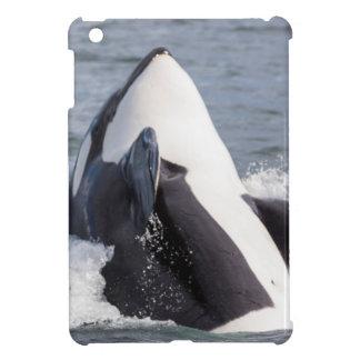 Orca whale breaching case for the iPad mini
