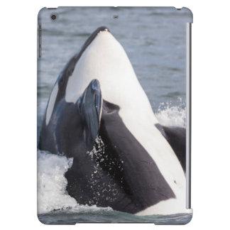 Orca whale breaching iPad air cover
