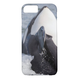 Orca whale breaching iPhone 7 case