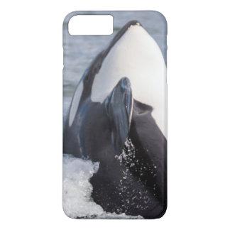 Orca whale breaching iPhone 7 plus case