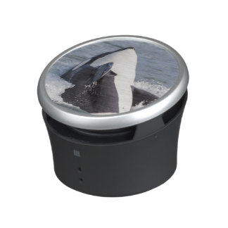 Orca whale breaching bluetooth speaker