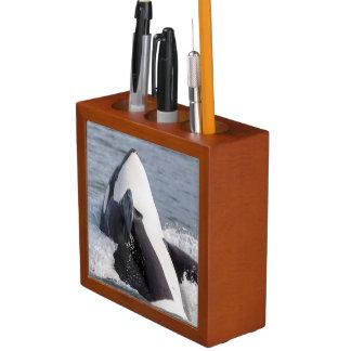Orca whale breaching pencil holder