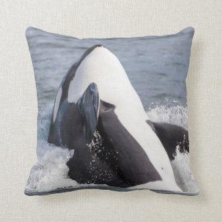 Orca whale breaching throw pillow