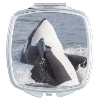 Orca whale breaching vanity mirror