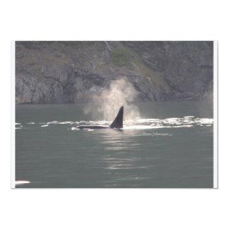 Orca Whale Breaths Out Mist in Whale Rich San Juan Card