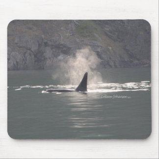 Orca Whale Breaths Out Mist in Whale Rich San Juan Mouse Pad