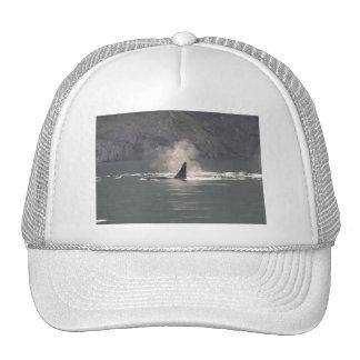 Orca Whale Breaths Out Mist in Whale Rich San Juan Trucker Hat