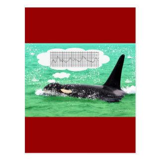 Orca Whale Christmas Green Sea Merry Christmas Postcard