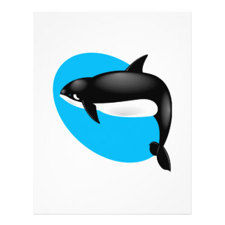 orca whale flyer