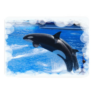 Orca Whale Custom Invite