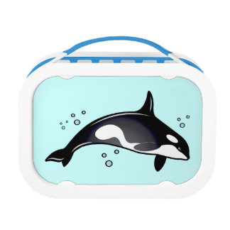 Orca Whale Lunch Box