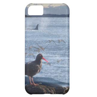 Orca Whale, Oyster Catcher Cascades Montage iPhone 5C Case