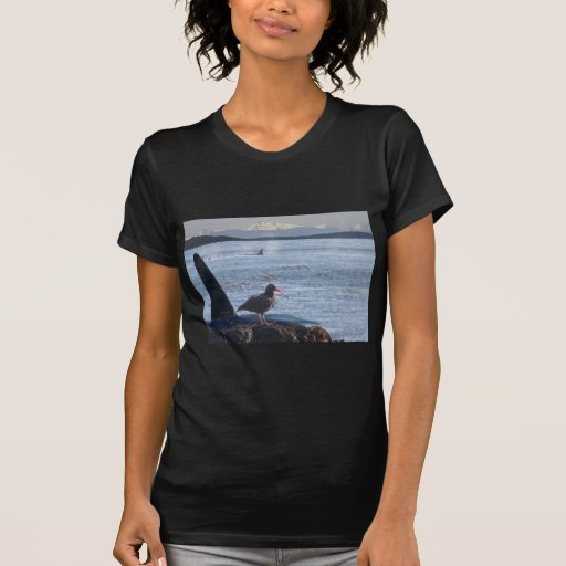 Orca Whale, Oyster Catcher Cascades Montage Shirts