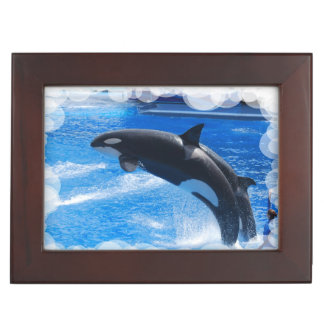 Orca Whale Memory Boxes
